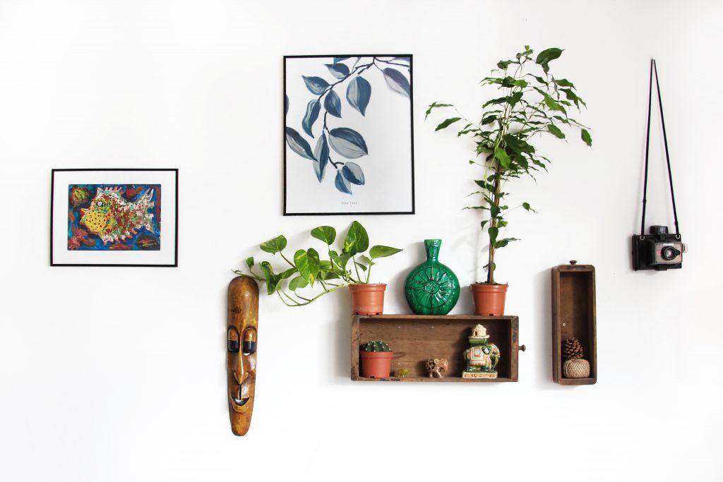 Une jolie collection d'objetd sur un mur blanc