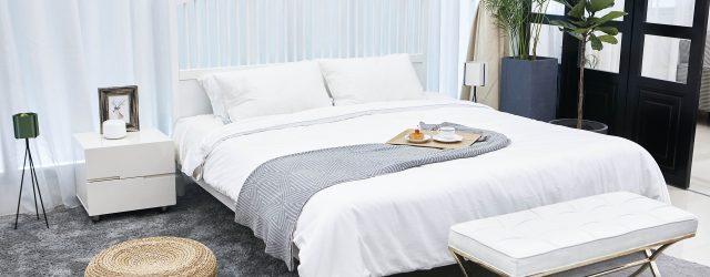 Chambre qui comporte un lit au centre, une verrière, un banc, une table de chevet, un tapis gris et une grande plante verte