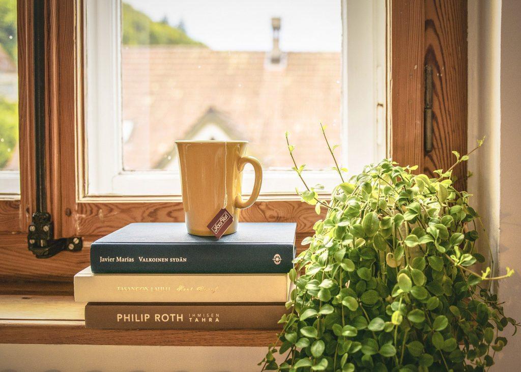 Rebord de fenêtre sur lequel se trouvent des livres, une tasse et une plante