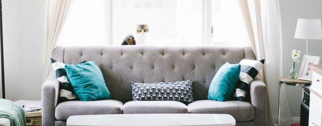 Salon avec canapé et table basse